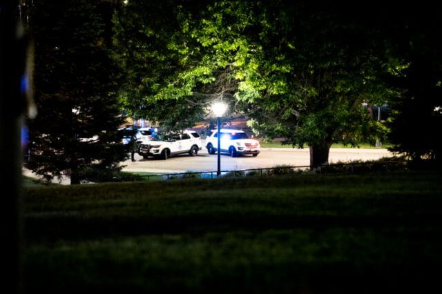 View through trees to two diagonally positioned police cars.