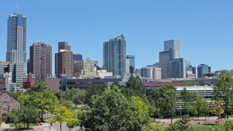 Denver skyline on a sunny summer day, facing east. Green deciduous trees make up the foreground.